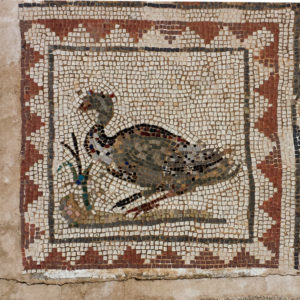 Goose mosaic, house of hte birds, Italica, Spain