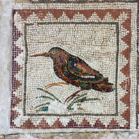 individual bird with triangles border, MOsaic of the Birds, Italica, Spain