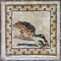 Quadricolor Meander Border, Mosaics of the BIrds, Italica, Spain.