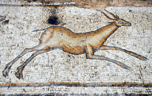 Gazelle from Byzantine birds mosaic, Caesarea, th