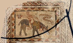The acrobat mosaic