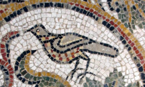 Don't you love this little bird ! He is characteristic of the regional mosaic style of the late 4th century.